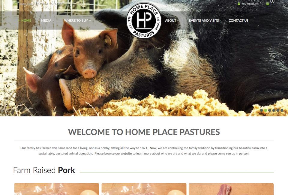 Affordable Small Business Website Design Web Design